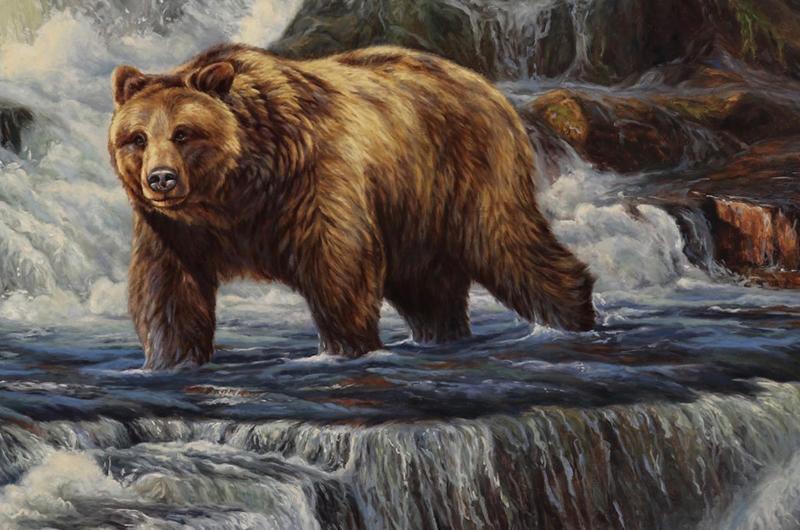 bear-crossing-the-river